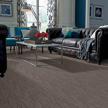 Anso® Nylon Carpet | Warrenville, IL